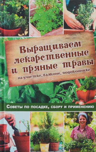 Выращиваем лекарственные и пряные травы на участке, балконе, подоконнике. Советы по посадке, сбору и применению