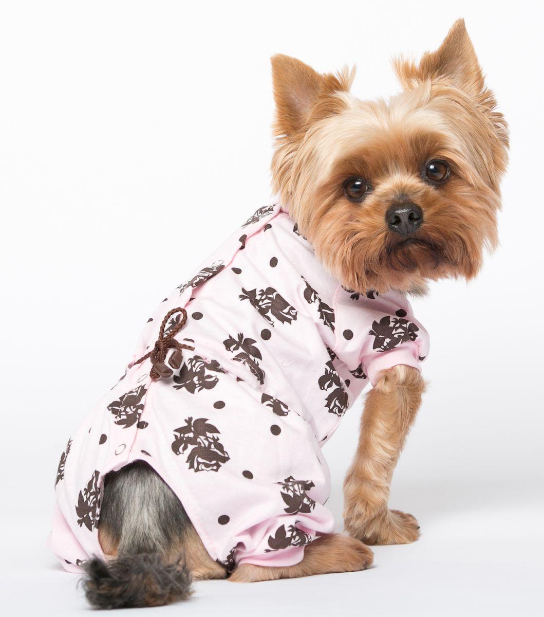 одежда для собак маленьких пород картинки лист отправляемый клиенту