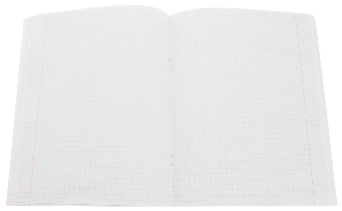 Тетрадь Hatber Аквалайф отлично подойдет для школьников, студентов и офисных работников.Обложка, выполненная из плотного картона, позволит сохранить тетрадь в аккуратном состоянии на протяжении всего времени использования. Лицевая сторона оформлена изображением горной реки.Внутренний блок тетради, соединенный двумя металлическими скрепками, состоит из 96 листов белой бумаги. Стандартная линовка в клетку голубого цвета дополнена полями.