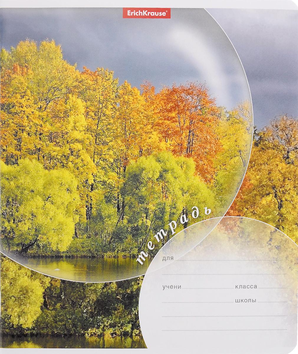 Набор тетрадей Erich Krause Магия природы Осень предназначен для младших школьников. Обложка каждой тетради выполнена из плотного картона с закругленными углами и оформлена изображением осеннего пейзажа.На обратной стороне обложки имеется справочная информация (русский и английский прописные алфавиты).Внутренний блок тетрадей состоит из 24 листов белой бумаги в линейку с красными полями.В наборе 10 тетрадей.