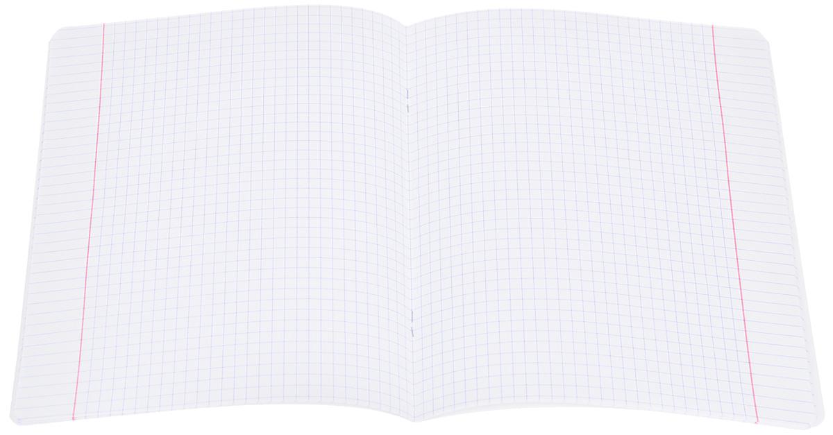 Набор тетрадей Erich Krause Родные просторы. Поле предназначен для младших школьников. Обложка каждой тетради выполнена из плотного картона с закругленными углами и оформлена изображением летнего пейзажа.На задней стороне обложки тетради представлены таблица умножения, меры длины, меры объема, меры площади и меры массы.Внутренний блок тетрадей состоит из 24 листов белой бумаги в клетку с красными полями.В наборе 10 тетрадей.