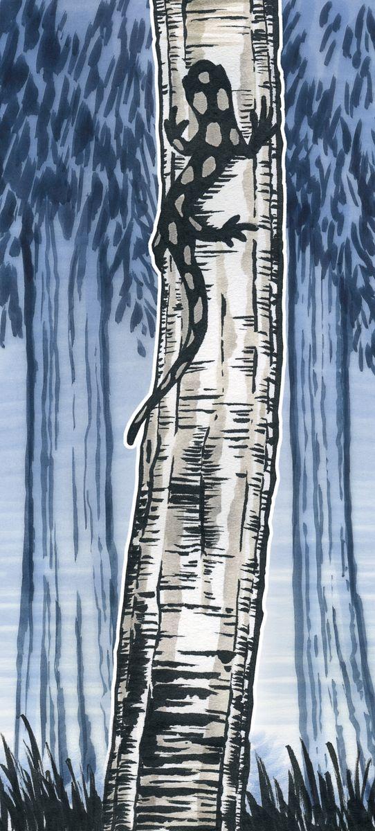 Одноразовые капиллярные ручки с кисточками Faber-Castell Shoft Brush станут незаменимым инструментом для начинающих и профессиональных художников. В набор входят 4 ручки разных цветов: слоновая кость, серо-голубой, чернильно-синий, черный.Заостренные кончики ручек позволяют проводить тончайшие линии. Чернила не выцветают на свету, не стираются и не размываются водой, не имеют неприятного запаха и pH-нейтральны.Набор художественных капиллярных ручек с кисточками - это практичный и современный художественный инструмент, который поможет вам в создании самых выразительных произведений.