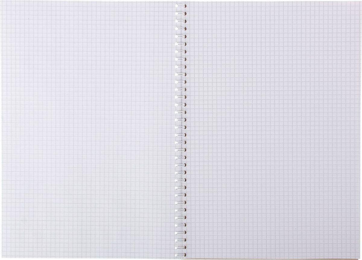 Пластиковая обложка в виде кармана со вкладышем. Вложенный титульный лист с рисунком-комиксом иллюстрирует возможность применения. Вы можете самостоятельно придумывать и распечатывать дизайн обложки и вкладывать его в пластиковый карман. Подложка: жесткая, картон 1,5 мм.