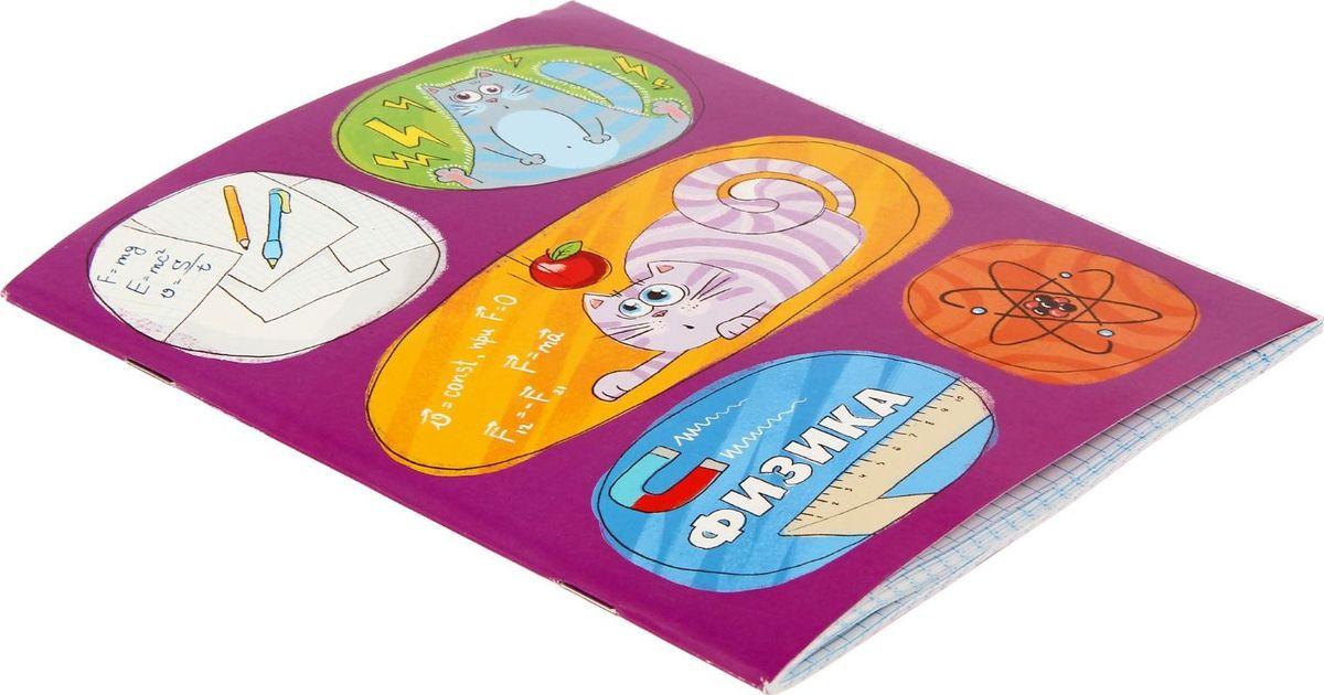 Тетрадь Физика подойдет для школьников и студентов.Бумажная обложка выполнена в уникальном дизайне. Внутренний блок тетради, соединенный двумя металлическими скрепками, состоит из 48 листов белой бумаги.Стандартная линовка в голубую клетку дополнена полями.Забавные картинки и справочный материал подарят отличное настроение!