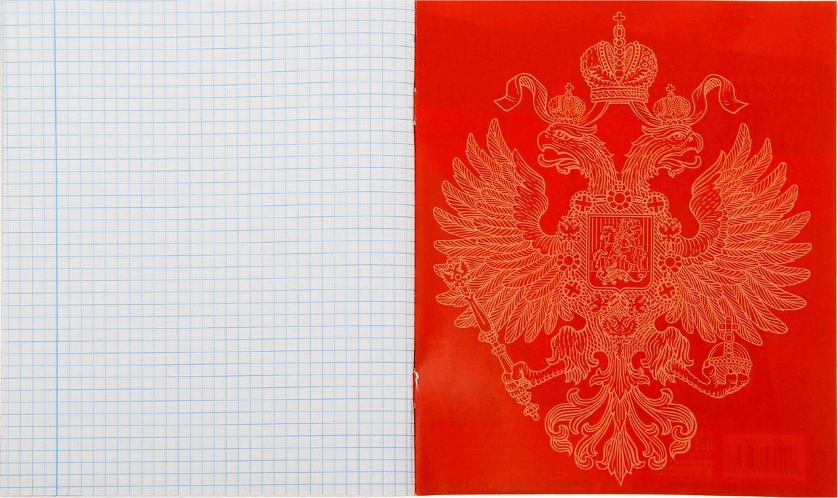 Тетрадь Россия подойдет для школьников и студентов.Бумажная обложка выполнена в патриотической тематике. Внутренний блок тетради, соединенный двумя металлическими скрепками, состоит из 48 листов белой бумаги.Стандартная линовка в голубую клетку дополнена полями.