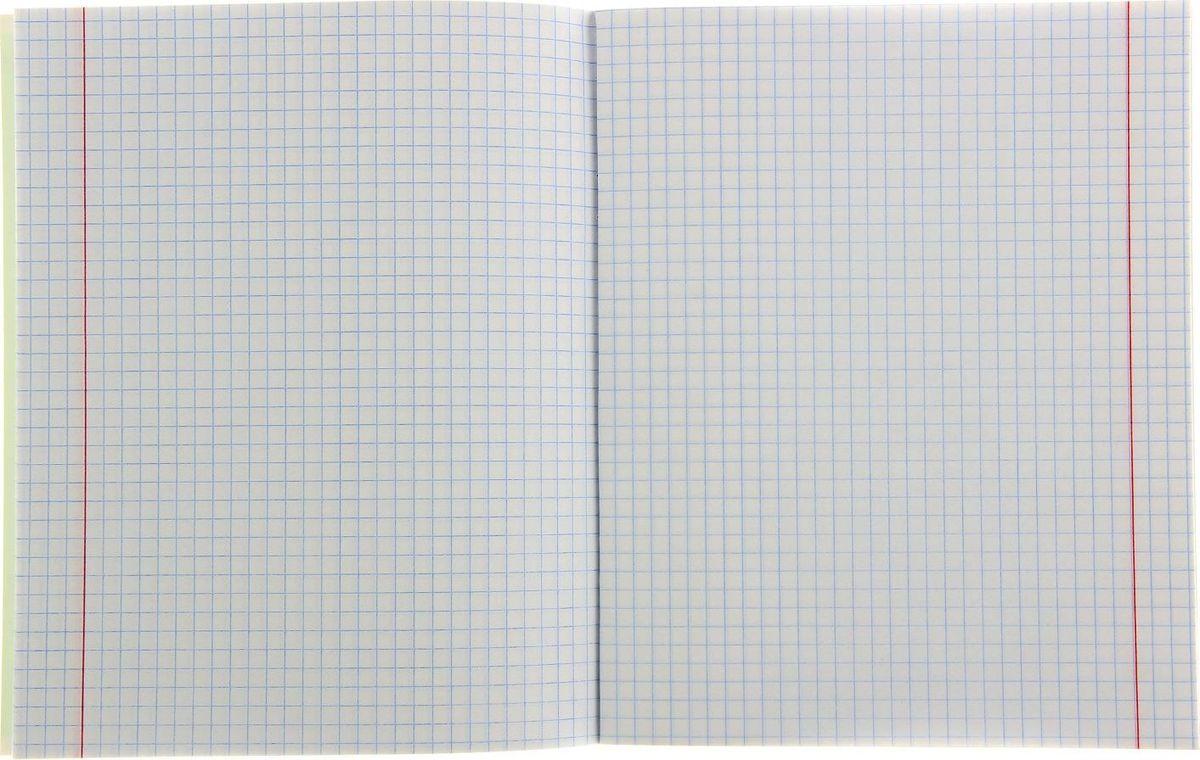 Предметная тетрадь Проф-Пресс Модный стиль: Обществознание станет идеальным вариантом для учебы.Яркая обложка выполнена из картона. Внутренний блок тетради состоит из 48 листов белой полуглянцевой бумаги. Стандартная линовка в клетку дополнена полями. Тетрадь содержит полезную справочную информацию по предмету.