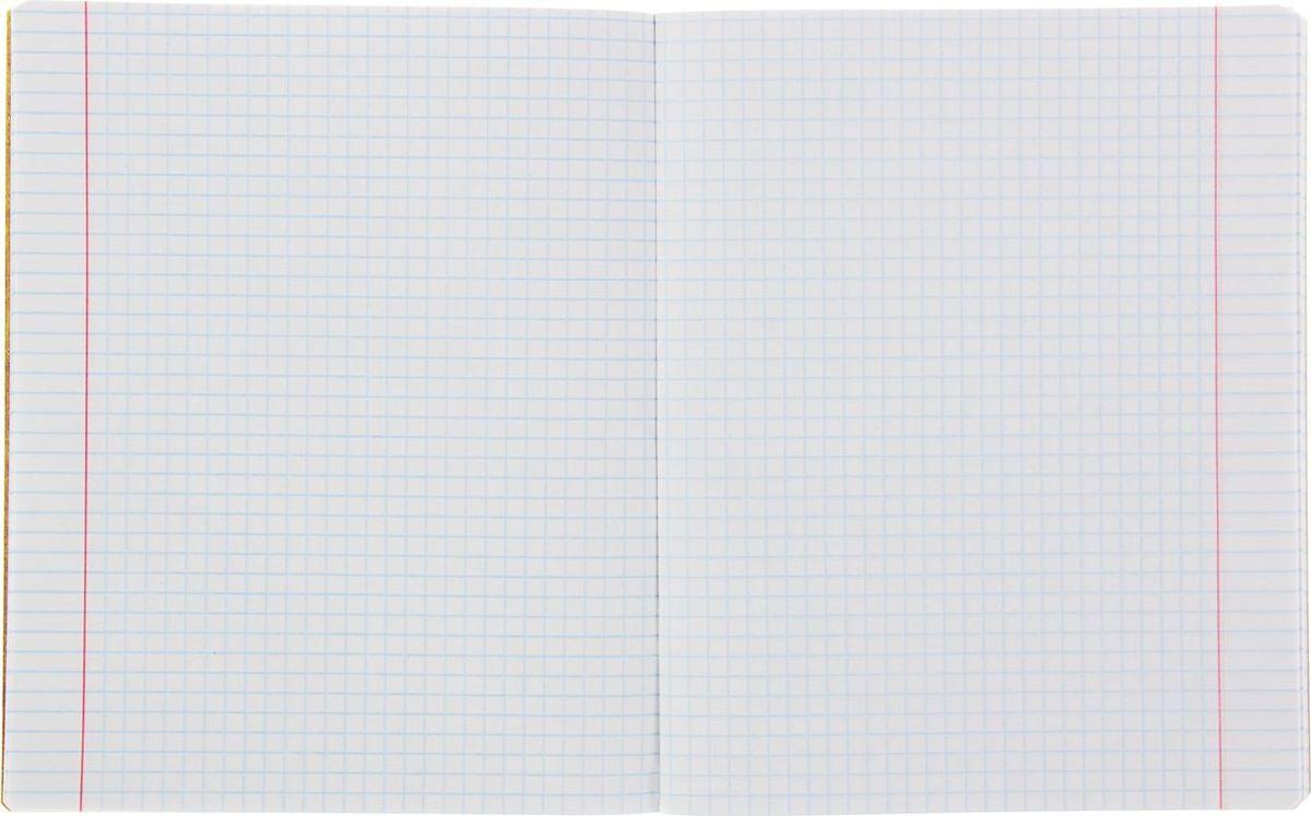 Предметная тетрадь ПЗБФ Золотая лихорадка-2: Биология станет идеальным вариантом для учебы.Обложка выполнена из металлизированного картона. Внутренний блок тетради состоит из 48 листов белой бумаги. Стандартная линовка в клетку дополнена полями. Тетрадь содержит полезную справочную информацию по предмету.
