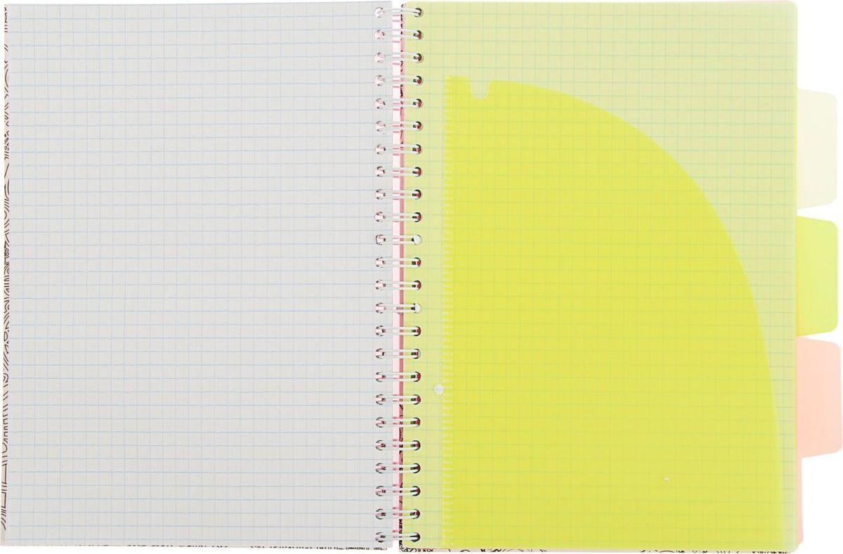 Тетрадь Expert Complete Neon Book подойдет как студенту, так и офисному служащему.Обложка выполнена из прочного пластика. Тетрадь дополнена тремя цветными пластиковыми разделителями.Внутренний блок на спирали состоит из 120 листов в клетку.