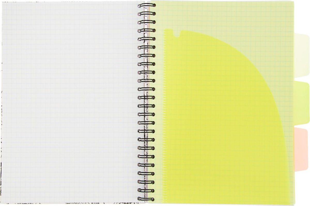 Тетрадь Expert Complete Neon Book подойдет как студенту, так и офисному служащему.Обложка выполнена из прочного пластика.Тетрадь дополнена тремя цветными пластиковыми разделителями.Внутренний блок на спирали состоит из 120 листов в клетку.