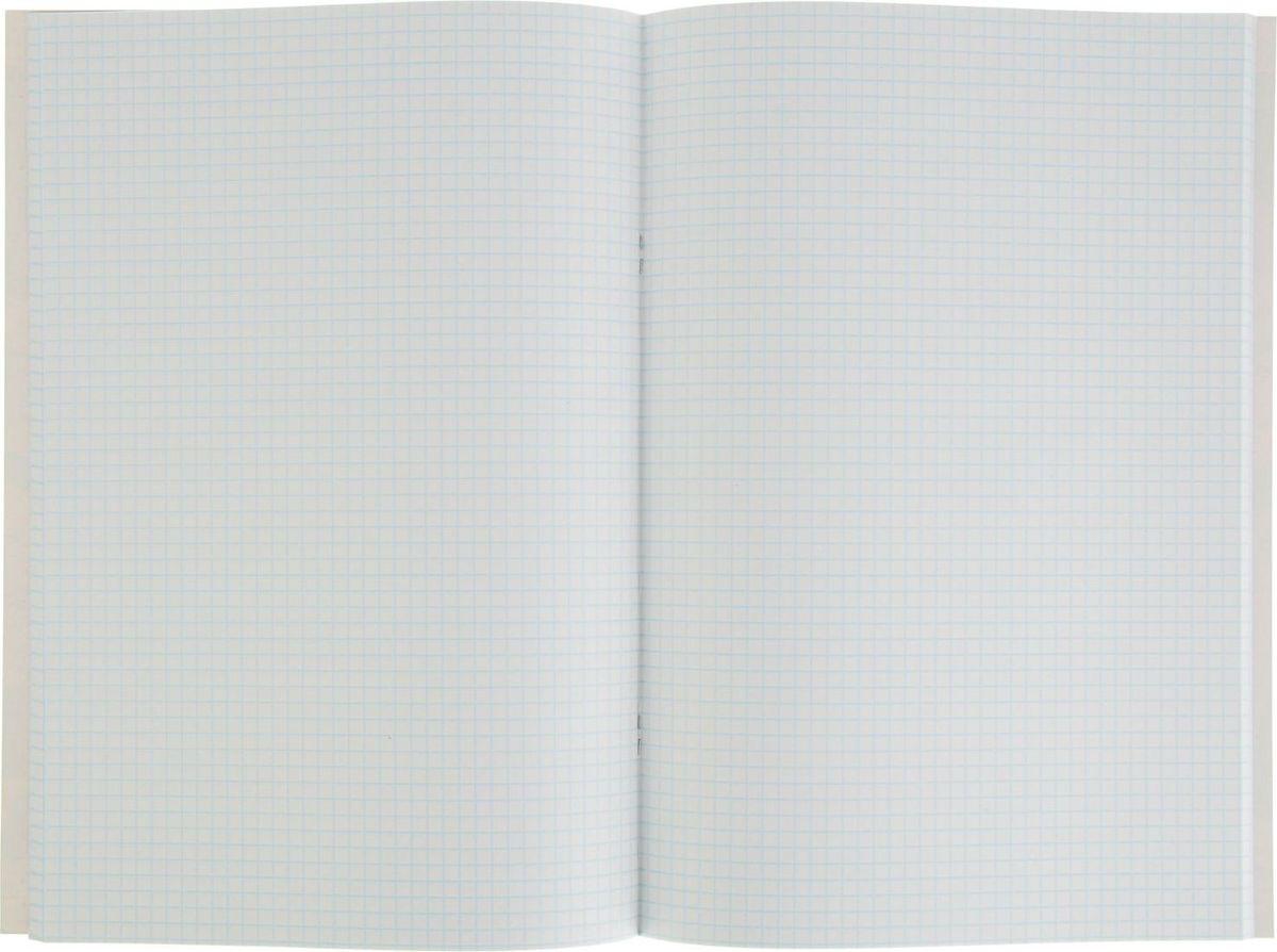 Тетрадь Academy Style Цветочный паттер отлично подойдет как школьнику, так и студенту. Обложка тетради выполнена из картона и дополнена стильным изображением.Внутренний блок тетради на скобах состоит из 80 листов белой бумаги с линовкой в клетку голубого цвета без полей.
