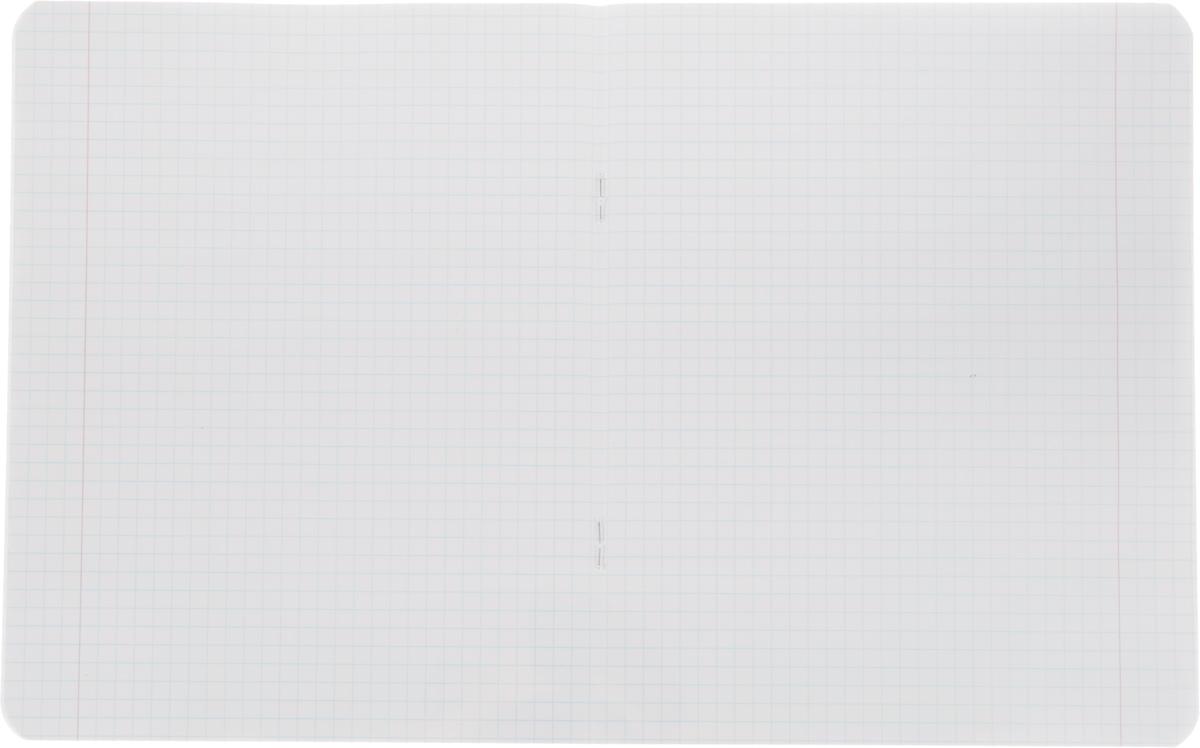 Тетрадь Hatber Regal Academy прекрасно подойдет для любой юной школьницы.Обложка, выполненная из плотного картона, позволит сохранить тетрадь в аккуратном состоянии на протяжении всего времени использования. Задняя обложка тетради дополнена таблицей умножения.Внутренний блок тетради, соединенный двумя металлическими скрепками, состоит из 12 листов белой бумаги. Стандартная линовка в голубую клетку дополнена полями и закругленными углам.