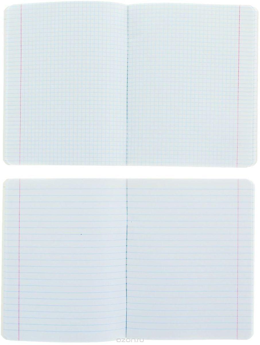 Набор тетрадей Альт Классика прекрасно подойдет для учащихся средних и старших классов.Обложки тетрадей изготовлены из плотного картона.Внутренний блок каждой тетради состоит из 48 листов белой бумаги. Страницы размечены стандартной линовкой и дополнены полями, а также справочным материалом.Набор состоит из 10 тетрадей для разных учебных предметов.