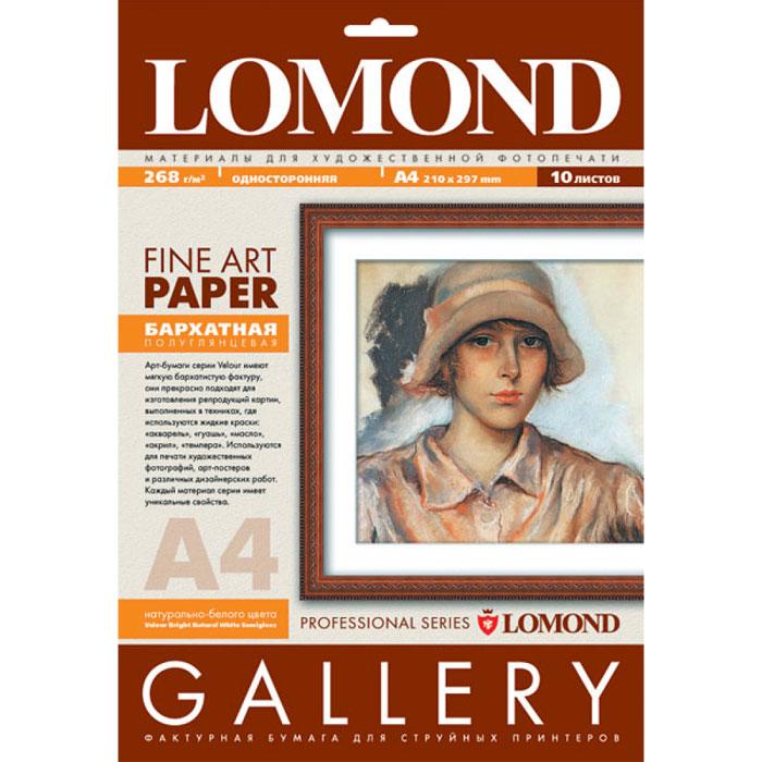 Lomond 268/A4/10л АРТ бумага бархат-velour односторонняя полуглянцевая (0911241)