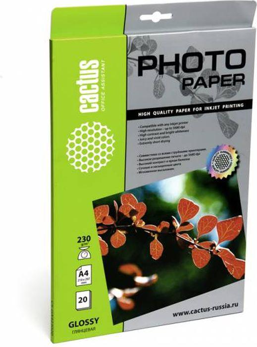 Cactus CS-GA423020 A4/230г/м2 глянцевая фотобумага для струйной печати (20 листов) -  Бумага для печати
