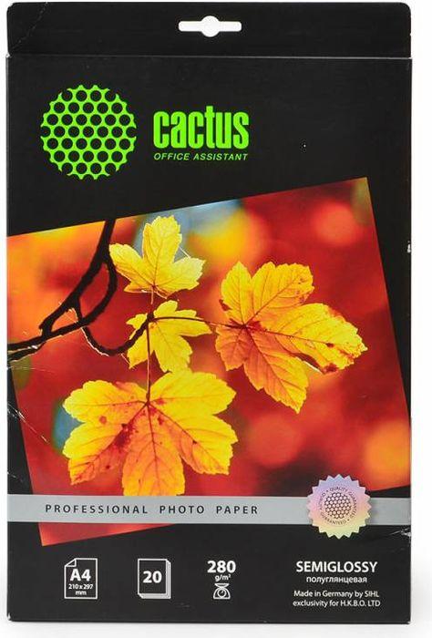 Cactus Prof CS-SGA428020 A4/280г/м2 полуглянцевая фотобумага для струйной печати (20 листов)