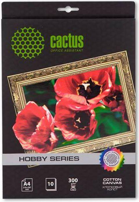 Cactus CS-СA426010 A4/300г/м2 холст для струйной печати (10 листов)CS-СA426010Хлопковый холст Cactus CS-СA426010 для струйной печати.Арт-бумага Cactus позволит вам воплотить самые смелые идеи и вдохновенные идеи для творчества и бизнеса. Специальное тиснение превратит в произведение искусства даже обычный текст и станет изысканным штрихом, дополняющим фирменный стиль и имидж ваших отпечатков.Совместимость со струйными принтерами Hewlett-Packard, Canon, Epson и другими марками.