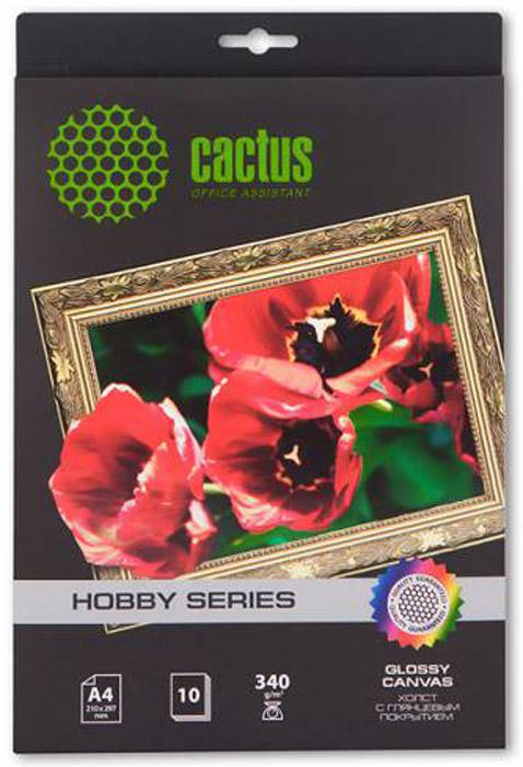 Cactus CS-СGA426010 A4/340г/м2 глянцевый хлопковый холст для струйной печати (10 листов) -  Бумага для печати