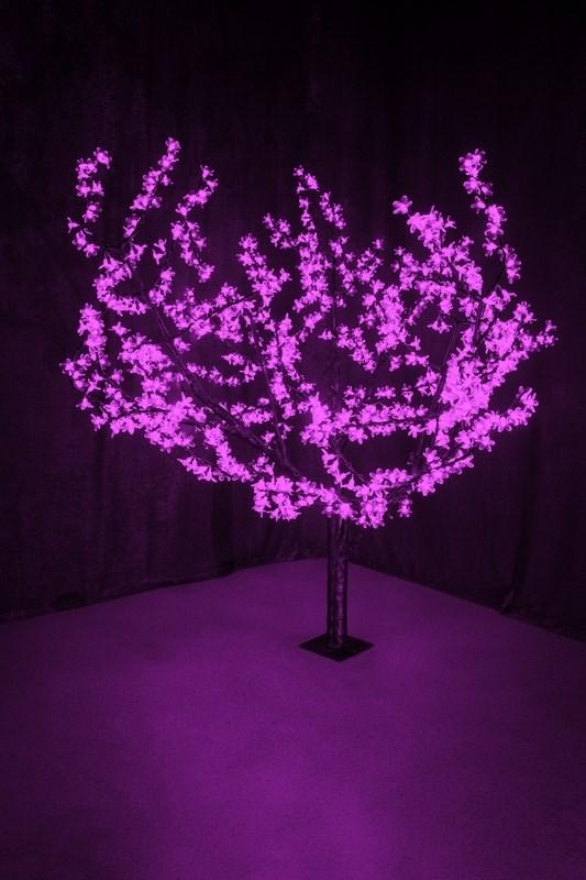 Светодиодное дерево Neon-Night Сакура, цвет: фиолетовый, диаметр кроны 180 см, высота 150 см531-106Световое дерево Сакура представляет собой имитацию цветущей японской сакуры. Оно используется для декоративного освещения интерьеров и ландшафтов. Такое дерево может стать прекрасным украшением для вашего дома, офиса, торгового зала, кафе, ресторана или загородного участка. Оно создаст уют, придаст оригинальный стиль и необходимый вам колорит независимо от времени года.Конструкция имеет лекгосплавной каркас в оболочке из темного пластика. На ветках дерева расположены яркие светодиодные гирлянды с силиконовыми насадками (цветками). Светодиодное дерево выглядит очень натурально. Питание осуществляется через сетевой трансформатор, поэтому изделие является низковольтным и может использоваться в уличных условиях.Диаметр кроны: 1,8 м.Высота дерева: 1,5 м.864 лепестка.