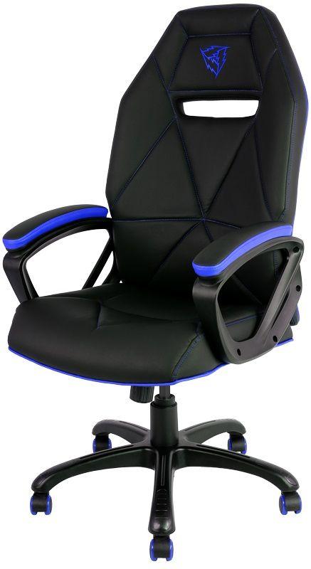 ThunderX3 TX3-10, Black Blue профессиональное геймерское креслоTX3-10BBПрочная металлическая основа.Мягкий кожзам.Тип механизма бабочка.Пневматическая регулировка высоты сиденья.Угол раскачивания 3° - 18°.50 мм нейлоновые колесики.