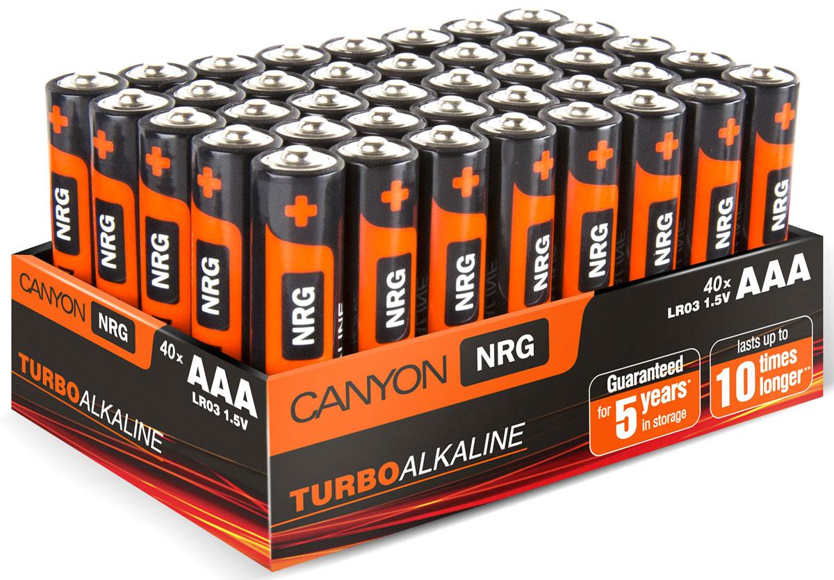 Батарейки Canyon NRG, щелочные, тип AAA (LR03), 40 шт.ALKAAA40Упаковка из 40 батареек типа АAА, разработанных для длительной и надежной работы с различными устройствами: видеокамеры, фотоаппараты, мыши, клавиатуры, портативные колонки, часы, геймпады и игрушки. В отличие от многих батареек, теряющих энергию без использования, в батарейках Canyon до окончания срока годности гарантированно останется по меньшей мере 80% от первоначального заряда. Батарейки Canyon не содержат кадмия, ртути и других вредных тяжелых металлов.