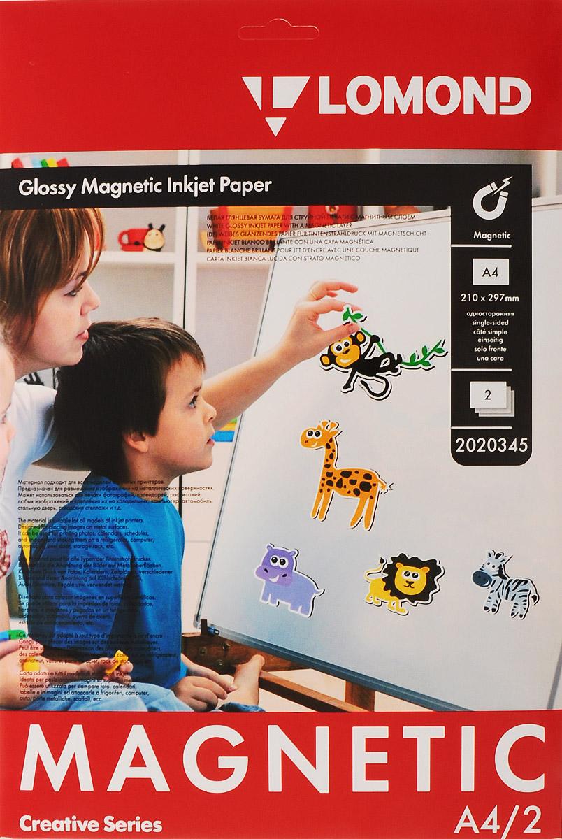 Lomond Magnetic Paper A4/2л материал с магнитным слоем, глянцевый