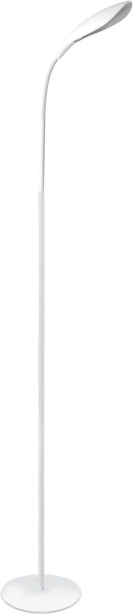 Светильник-торшер наполный Camelion, 5Вт, 230В, 6000К. KD-806 C0112726Превосходное и современное решение для офиса и дома, лаконичный стильный дизайн. Использование высококачественных материалов и комплектующих, а так же самых современных, безопасных и энергоэффективных источников света.