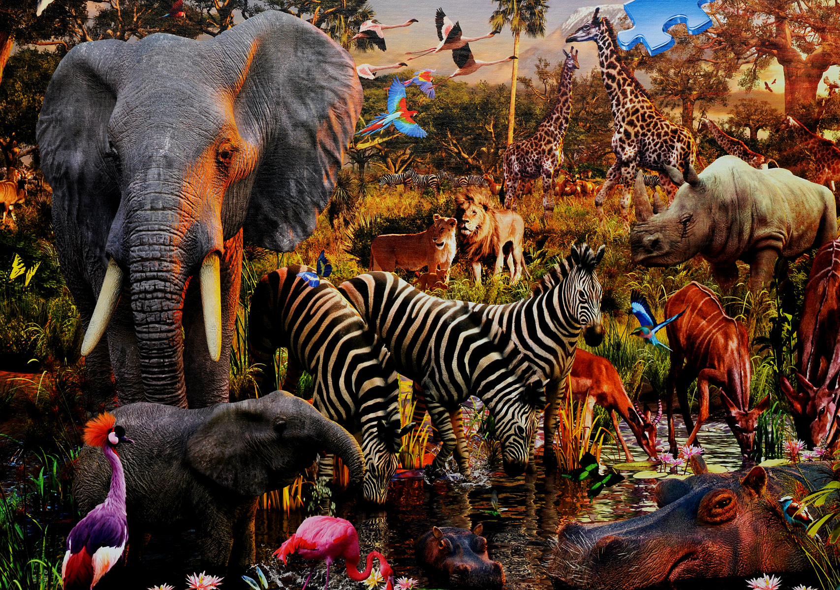 все животные мира с картинками животные