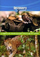 В джунглях Амазонки обитают два величайших хищника планеты: анаконда и ягуар.    Если эти два грозных животных столкнутся друг с другом, кто победит? После тщательного изучения поведения животных с помощью компьютерных технологий будет воссоздана виртуальная схватка противников, в результате которой и будет выяснено, кто же сильнейший.