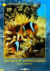 Relax: Красоты аквариума