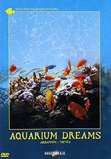 Наблюдать за жизнью аквариума сродни смотрению на огонь. Завораживает. И те, кто видел хороший аквариум хоть раз в жизни, где-то в душе лелеет мечту: