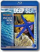 Красное море по праву считается одним из самых чистых и богатых по части подводной флоры и фауны мест: на южном Синае, например, встречается 137 разновидностей кораллов.  Коралловые рифы, протянувшиеся вдоль всего египетского побережья, являются своеобразным жизненным центром, привлекающим множество рыб. Поражает разнообразие форм кораллов: они могут быть круглыми, плоскими, разветвленными или иметь совсем уже фантастические формы и цветовую гамму - от нежно-желтого и розового до коричневого и синего. Разнообразию же обитателей коралловых рифов нет предела.