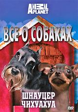Все о собаках: Шнауцер, чихуахуа книги эксмо самые популярные породы собак