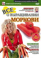 Все о выращивании моркови как правильно и выбрать новый автомобиль