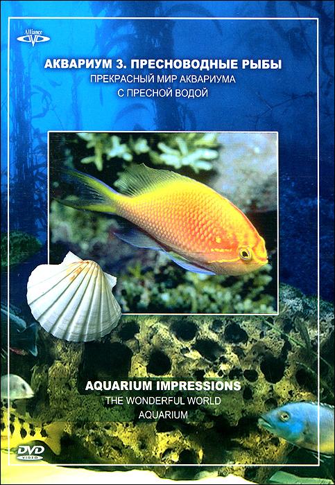 Прекрасный мир аквариума с пресной водой.В этом роскошном, красочном аквариуме Вы можете увидеть рыб из Южной Америки. Обычно они живут в озерах джунглей.