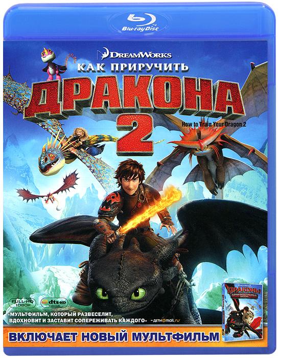 Как приручить дракона 2 (Blu-ray)